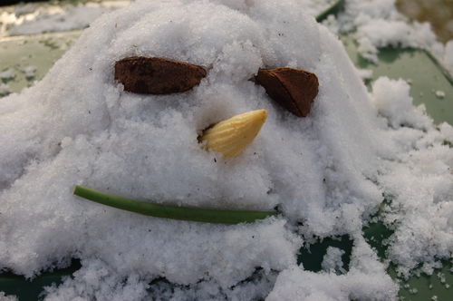 Snow head