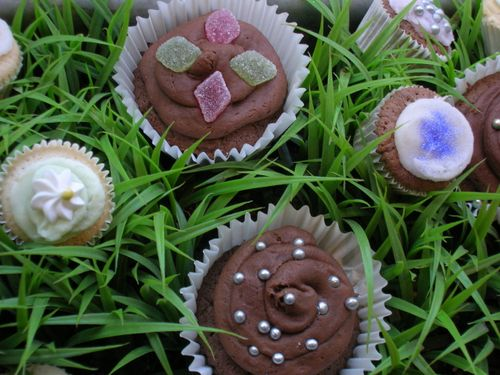 Cupcakes in the grass