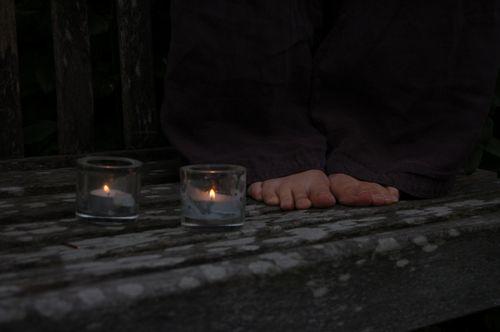 Bench monday twilight