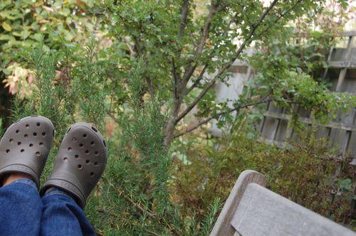 Bench monday - lying down