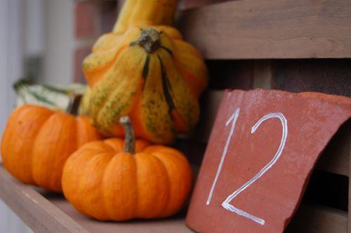 Back door gourds