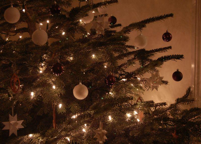 Tree real