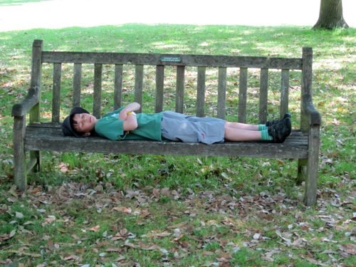 Bench snoozing mark