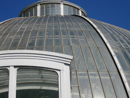Glasshouse roof