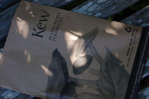 Kew bag