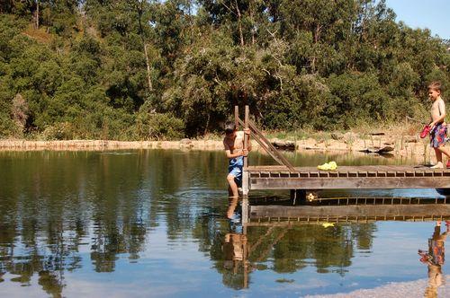Pond swimming