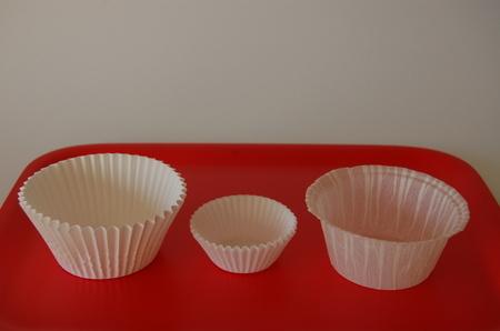 Paper case or basket case? - Domesticali