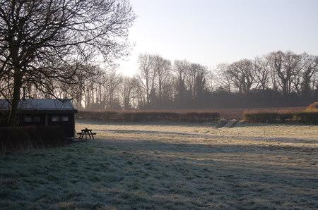 Featherdown_frost